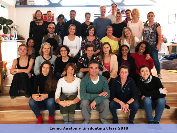 Anatomy and Physiology Training Course - Craniosacral Therapy ...